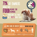 Big Fat Pet Nation UK: Obese Pet Facts - Infographic