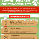 Christmas Pet Safety Infographic