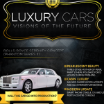 Luxury Cars Infographic