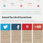 Social Media Posting Infographic