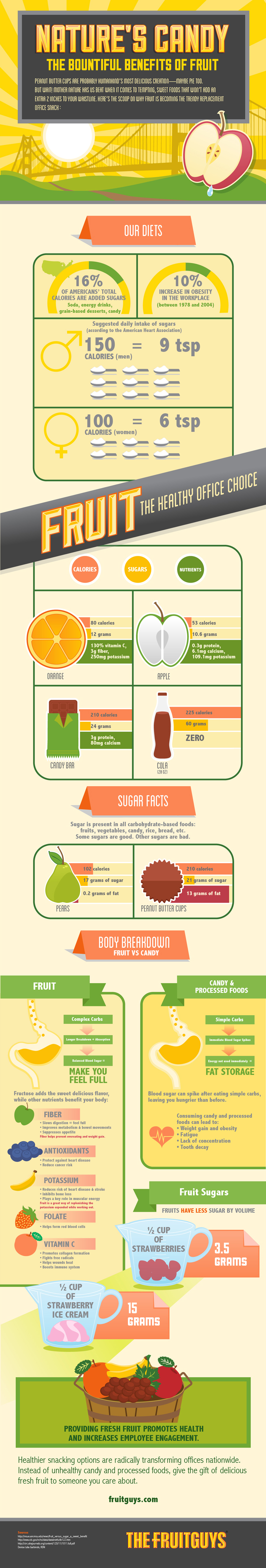 Fruit Benefits Infographic