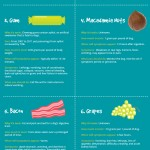 Food Safety for Dogs Infographic