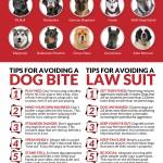 Dog Bite Infographic