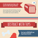 Fireworks and Dogs infographic