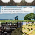 sustainable food infographic