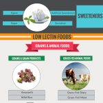 lectins nutrition infographic