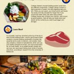 muscle building foods infographic