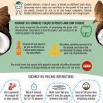 coconut oil infographic