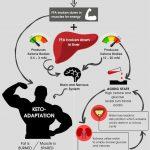 ketosis infographic