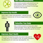 kale benefits infographic