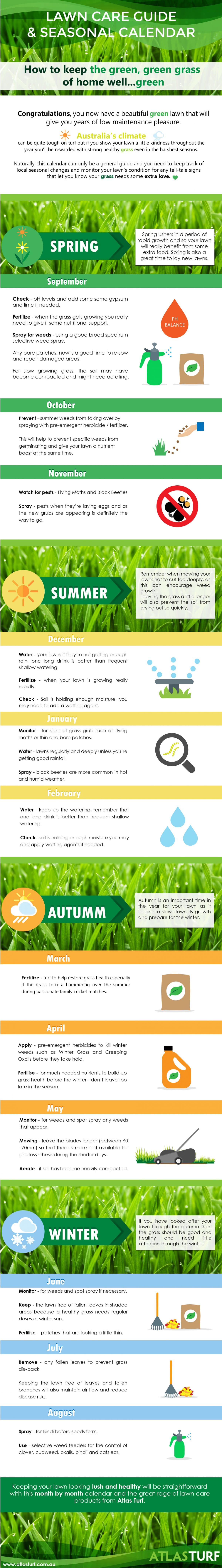 lawn care guide infographic