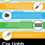 Car parts infographic
