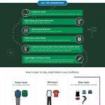 merino wool infographics